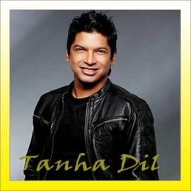 Tanha Dil - Tanha Dil - Shaan - 2000